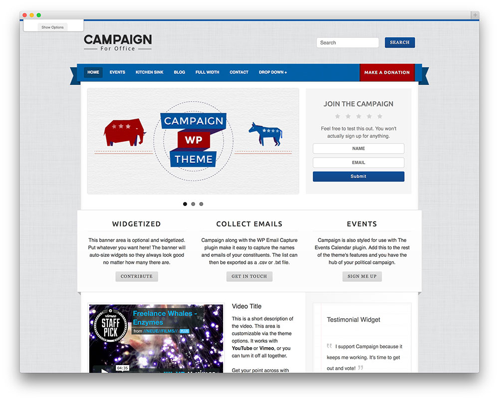 campaign - most popular political theme