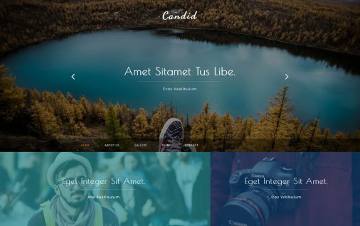 Candid Free Bootstrap Gallery Templates