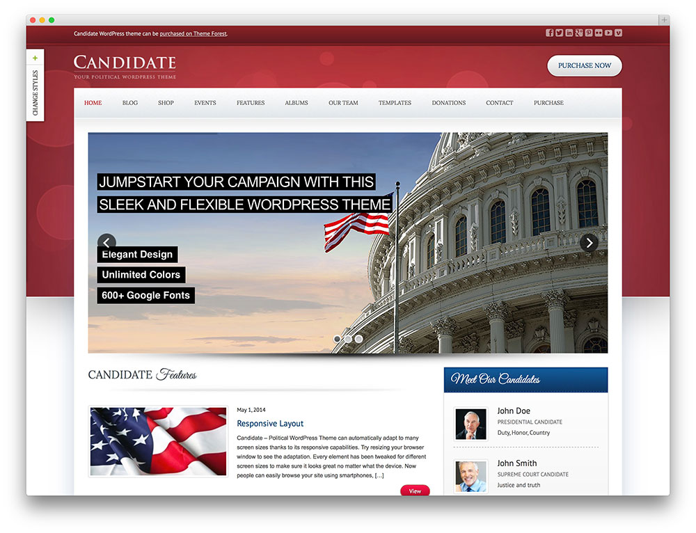 candidate premium looking WP theme