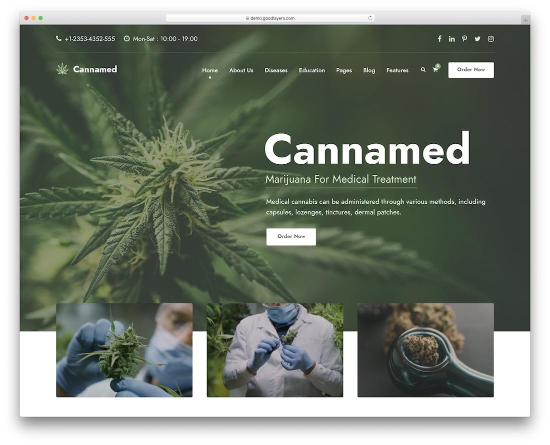 cannamed alternative medicine wordpress theme