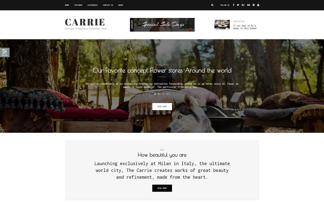 carrie wordpress instagram theme