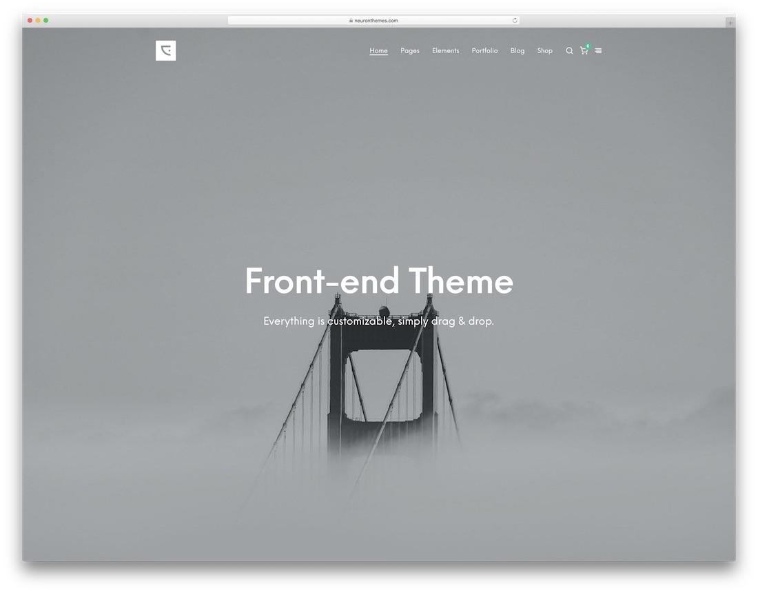 centaurus clean wordpress theme