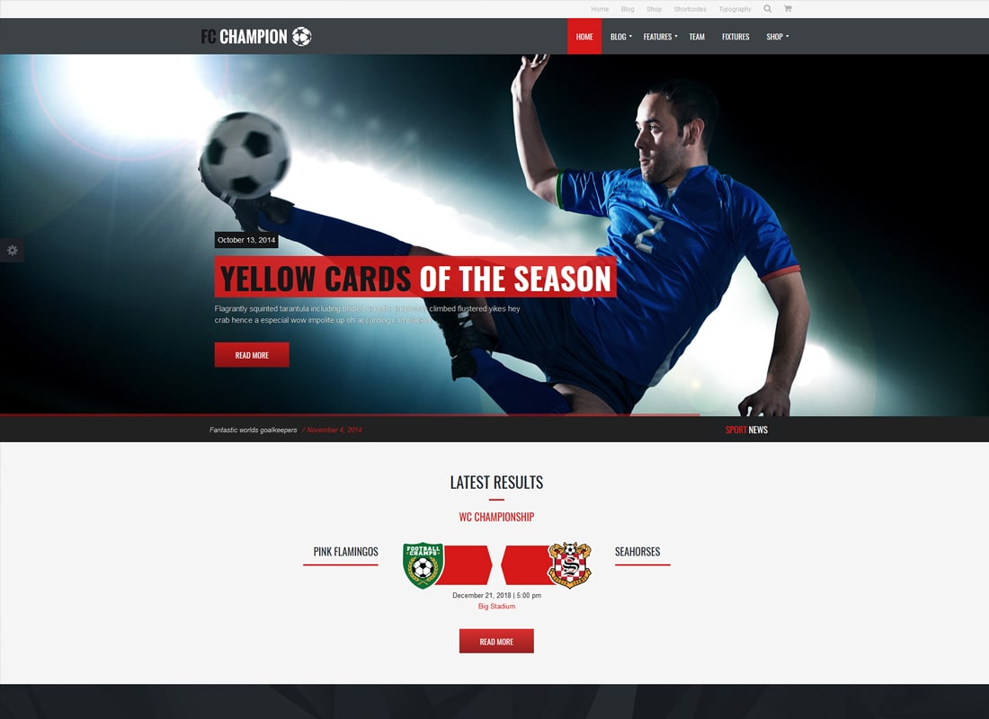 Champion | Soccer & Football WordPress Theme