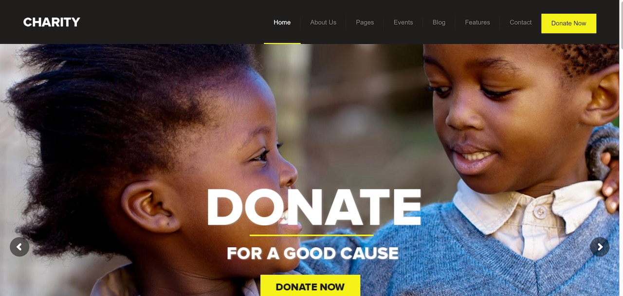 charity-foundationfundraising-wordpress-theme-CL