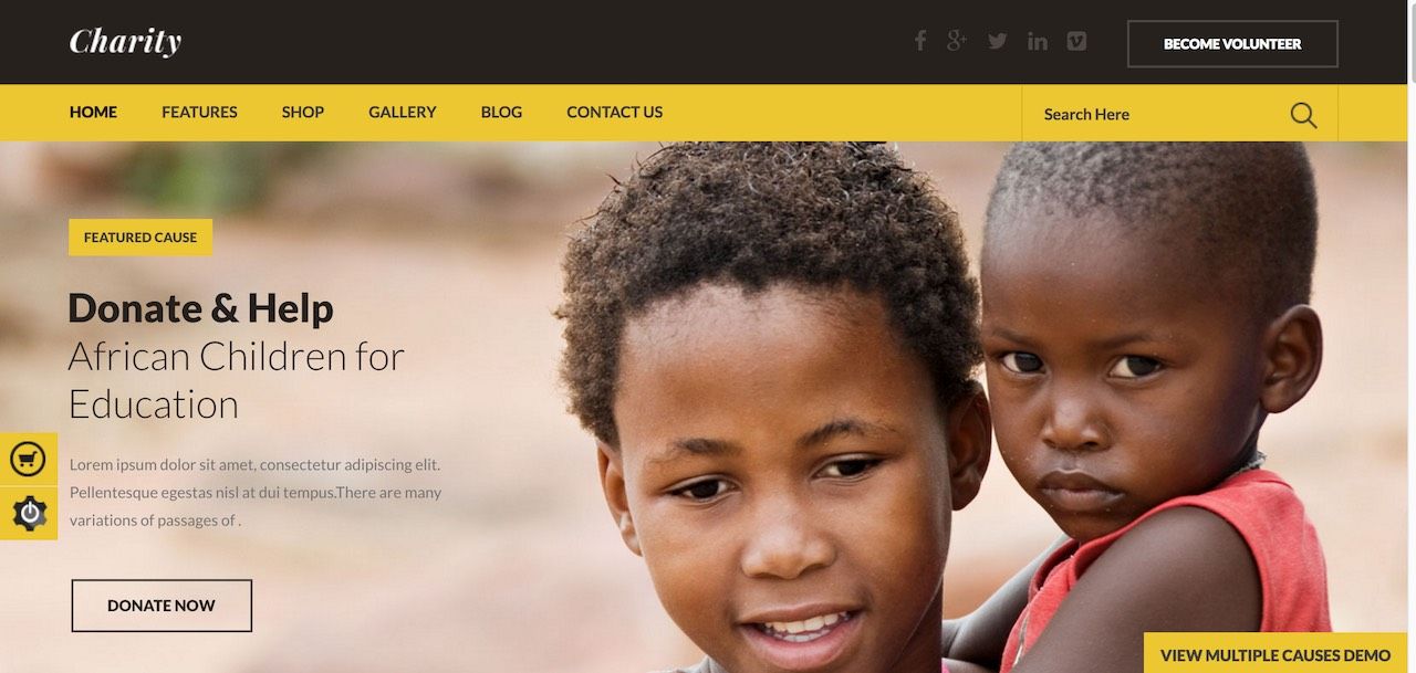 charity-nonprofitngofundraising-wordpress-theme-CL