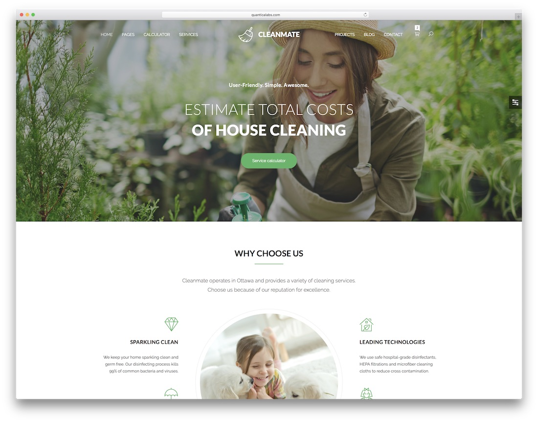 cleanmate mobile friendly website template