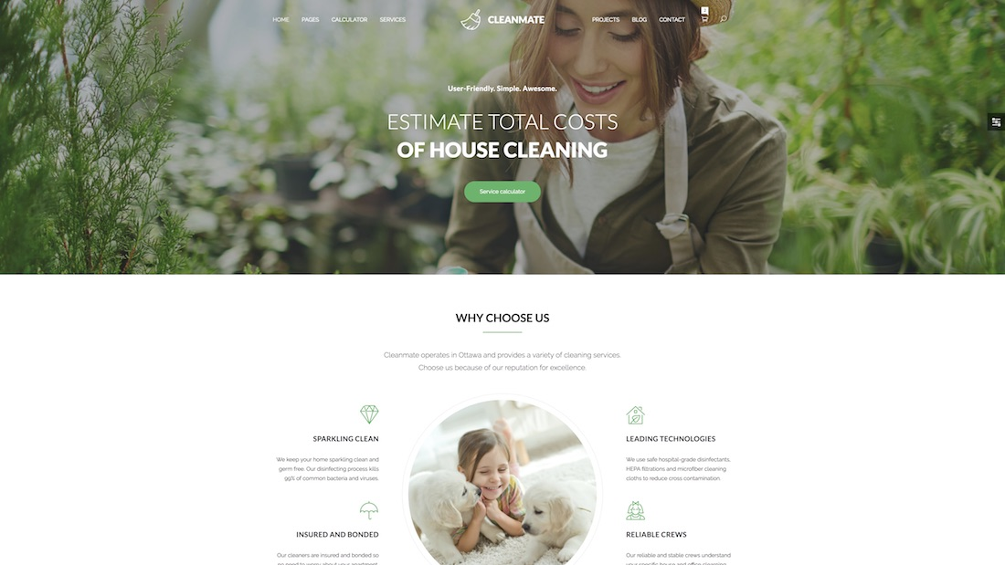 cleanmate mobile-friendly website template