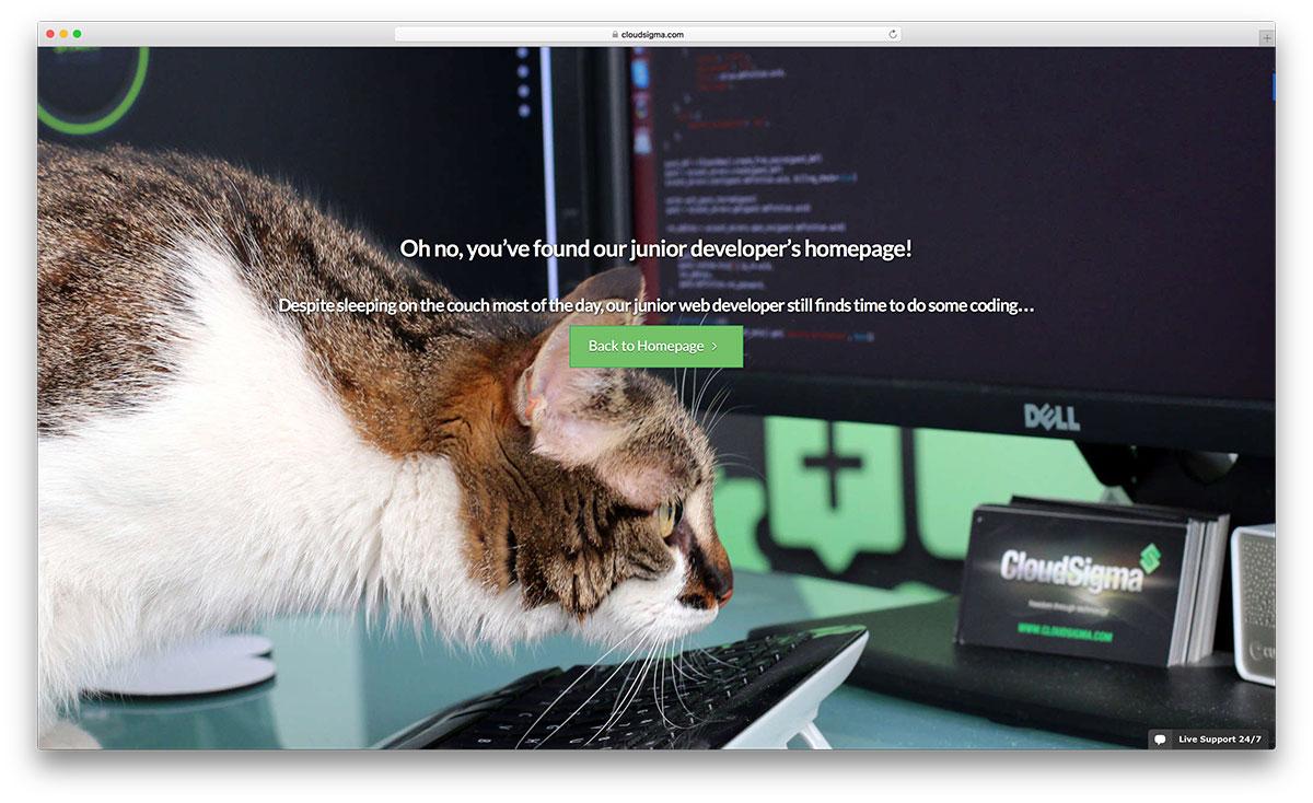 cloudsigma-404-funny-error-page-example