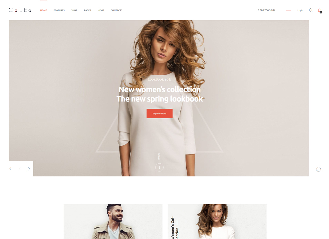 Coleo - A Stylish Fashion Clothing Store WordPress Theme