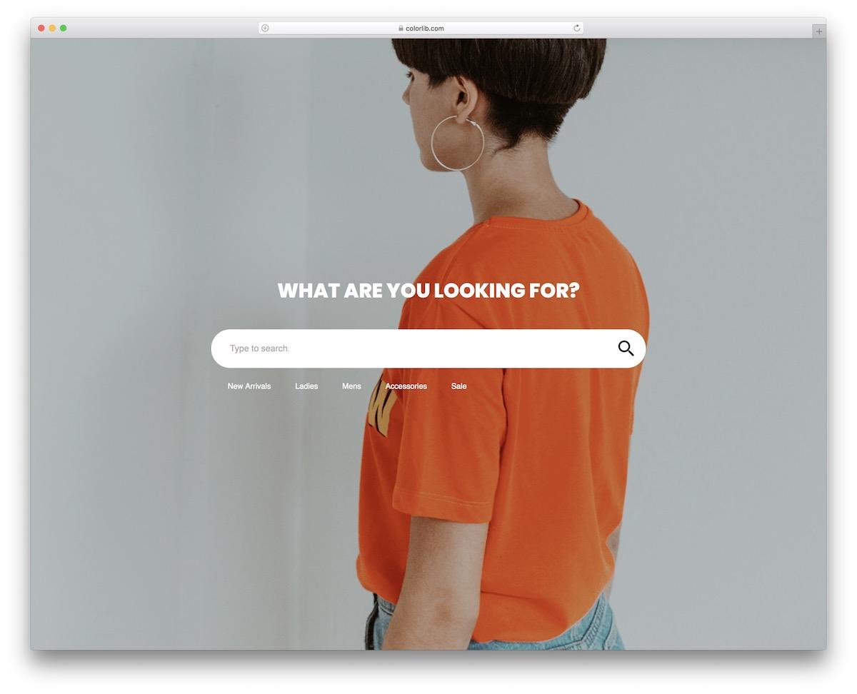 colorlib search form 4