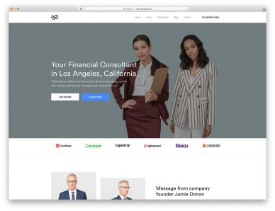 Consulting WordPress Themes