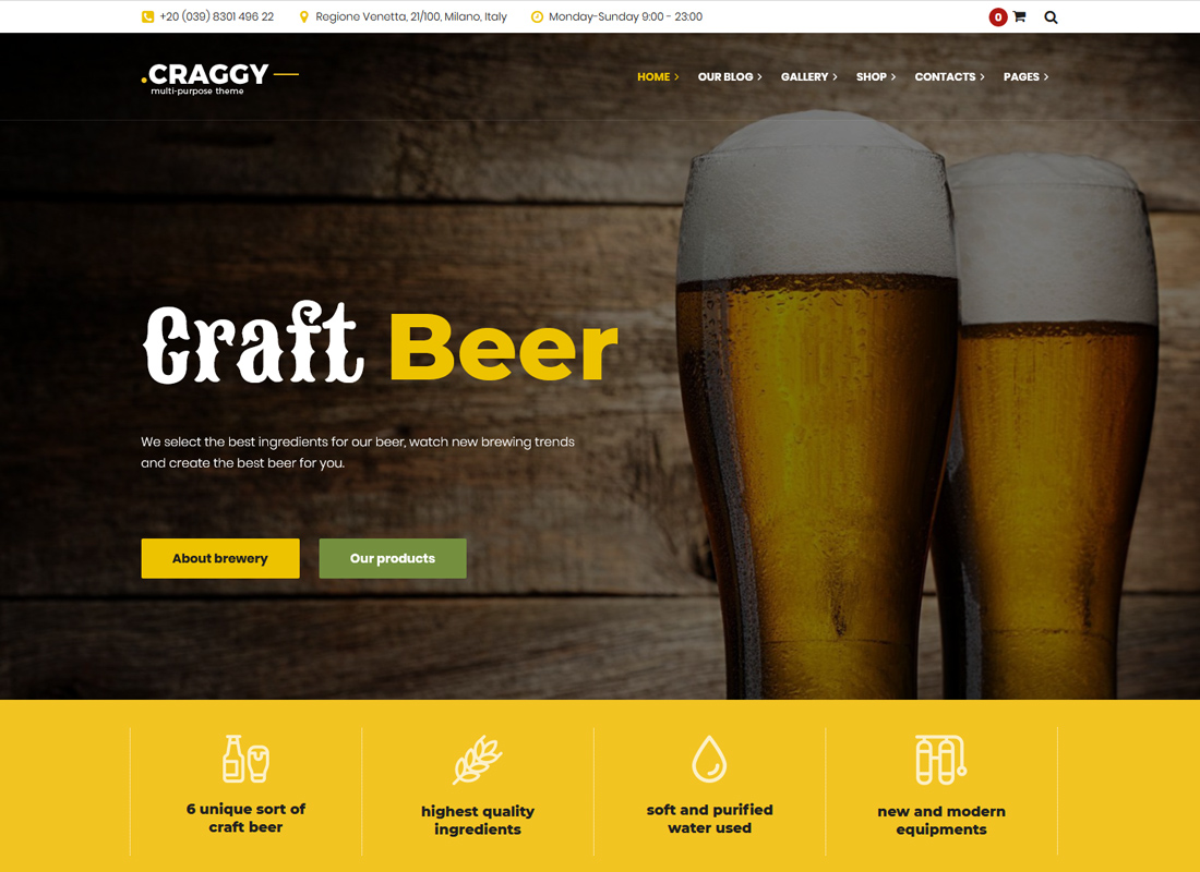 Craggy - Multi-purpose WordPress Theme