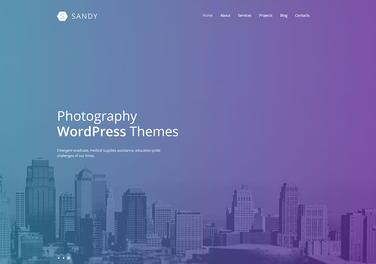 30+ Irresistible Design And Photography WordPress Themes For 2016