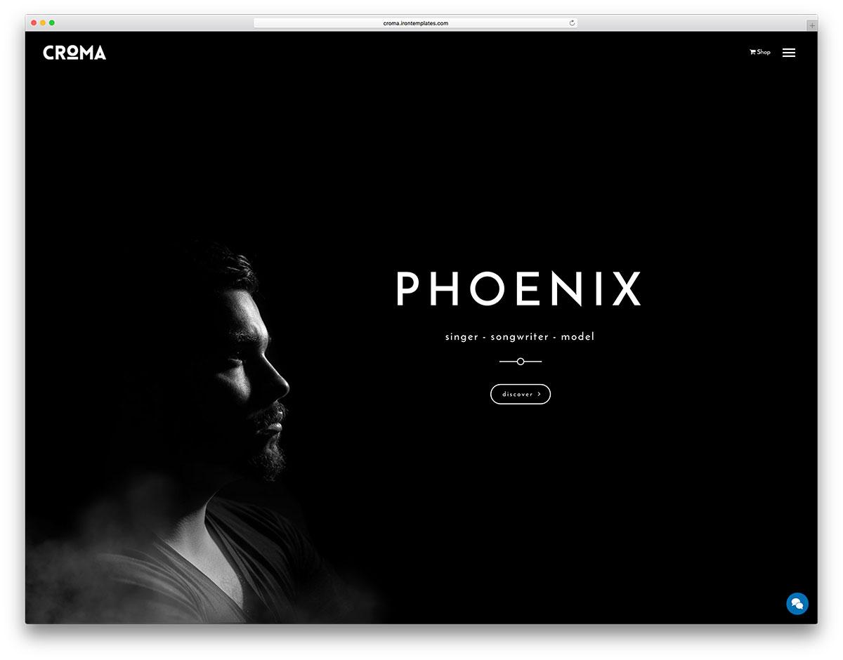 croma-singer-wordpress-website-template