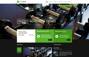 11 Amazing Crossfit Wordpress Themes 2015