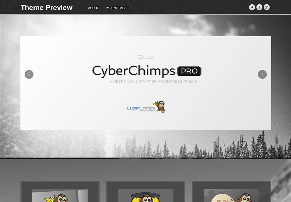 cyberchimps parallax theme