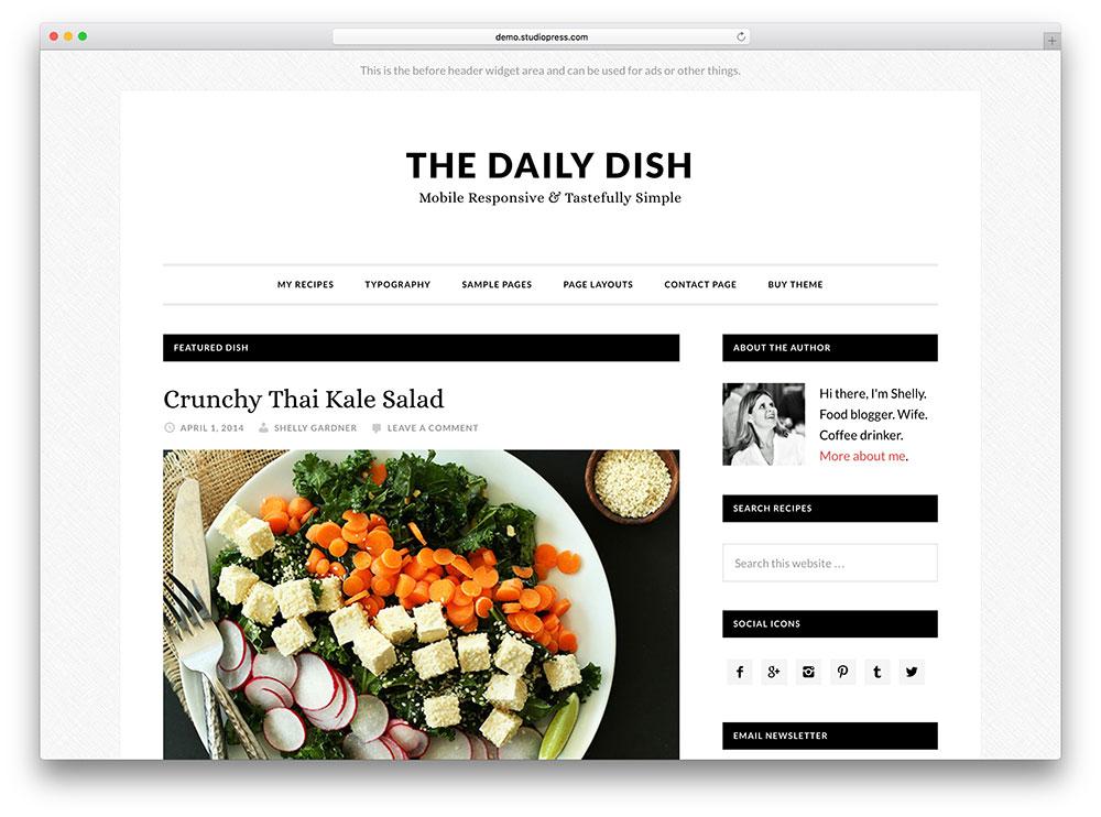 daily dish - food blog theme