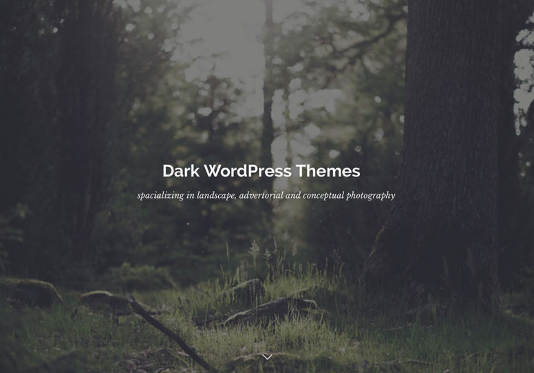 Top 18 Dark WordPress Themes To Make Your Website Look Serious And Professional