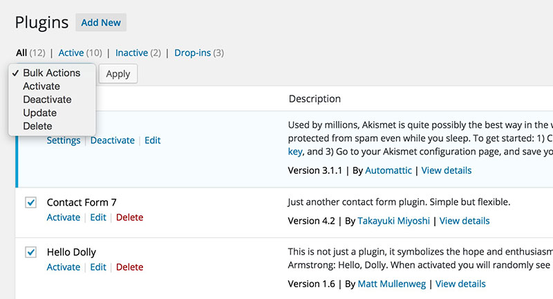 how to delete wordpress plugins