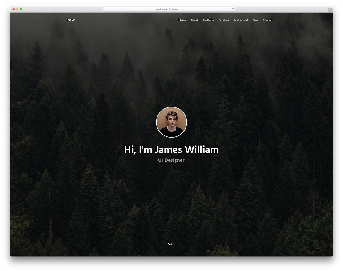 dew bootstrap personal website template