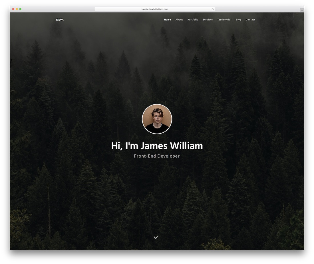 dew personal website template