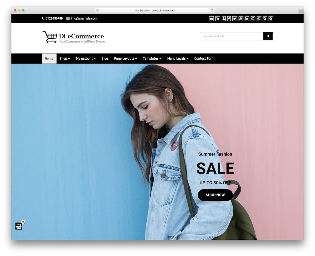 di ecommerce free wordpress theme