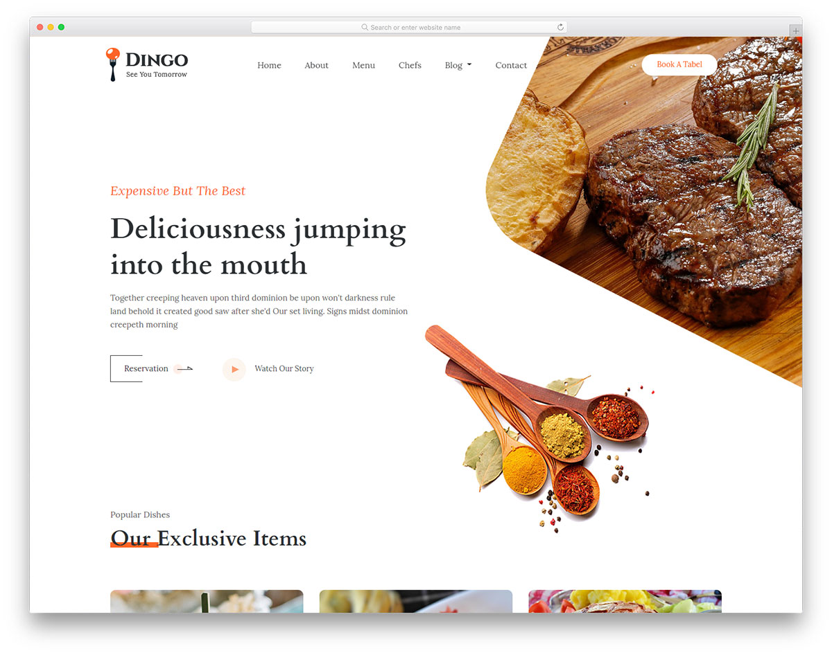 theme intro - Dingo - HTML eCommerce Responsive Template