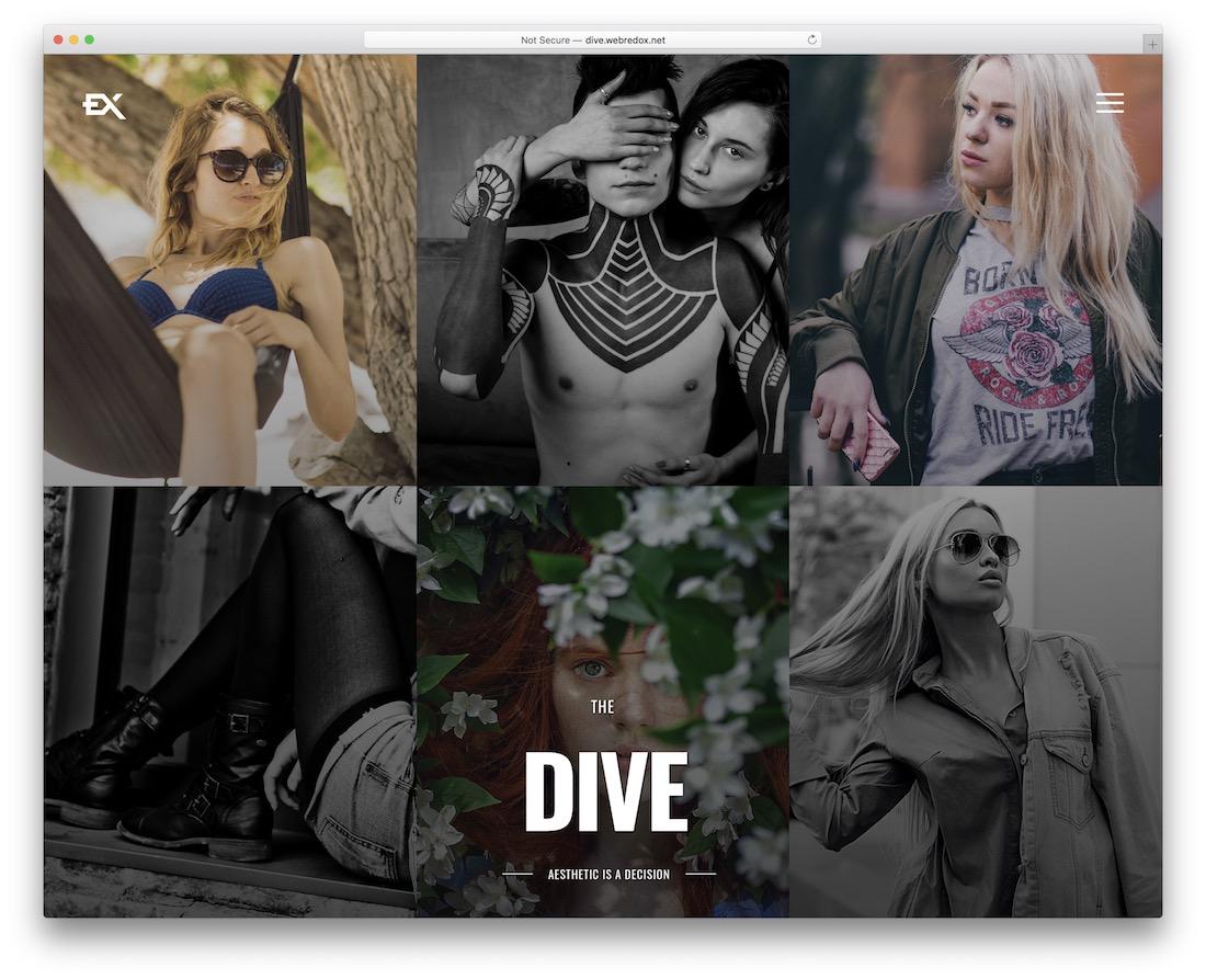 dive wordpress gallery theme
