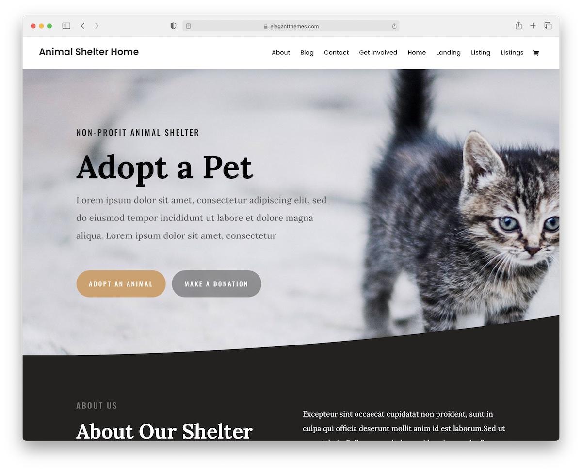 divi animal wordpress theme