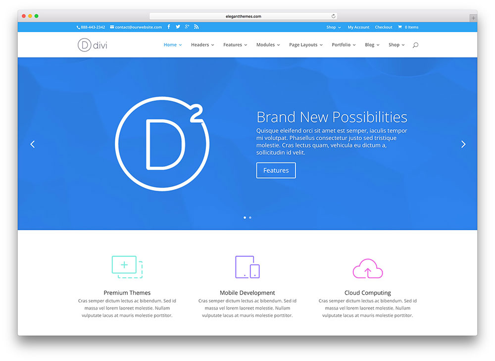 divi bright business theme