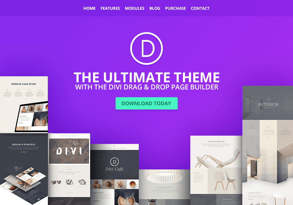 divi landing page WordPress theme