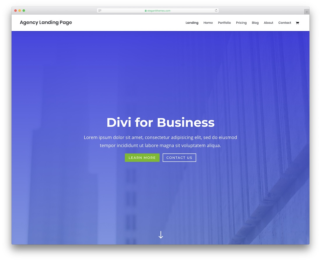 divi portfolio website template