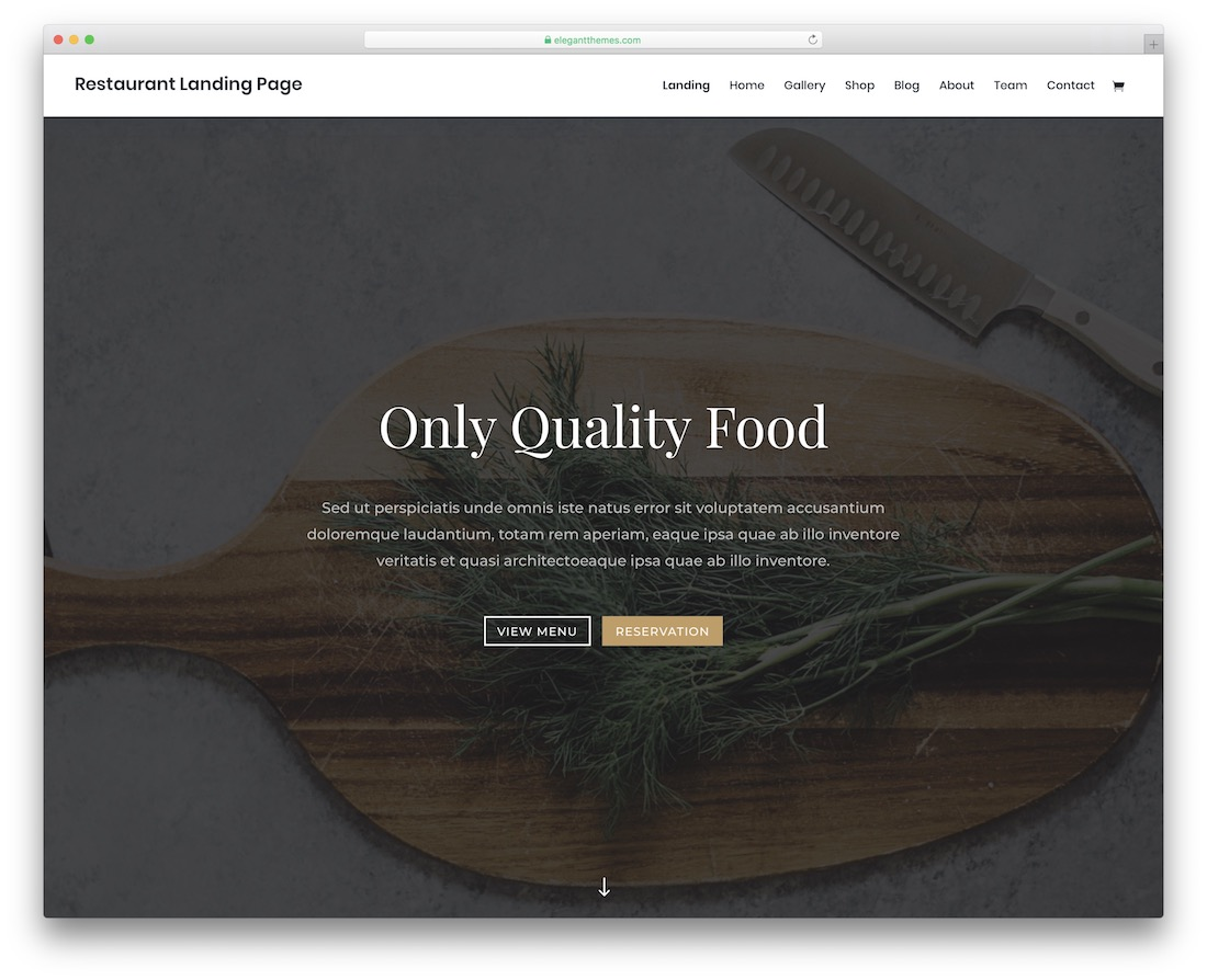 divi restaurant website template