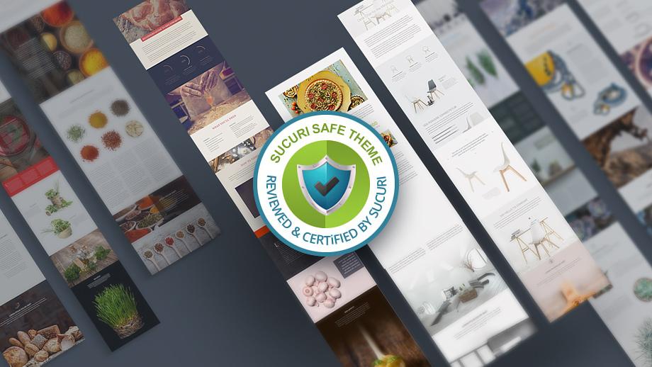 divi theme security