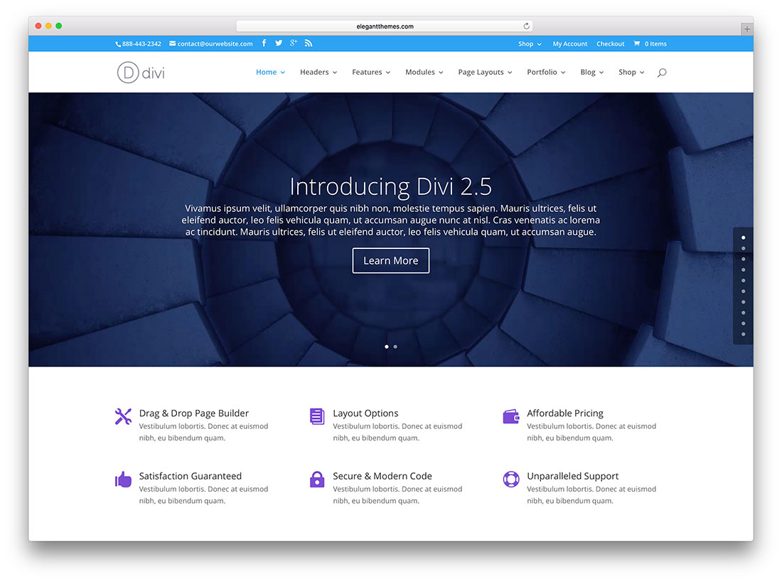 Divi Theme Website Examples