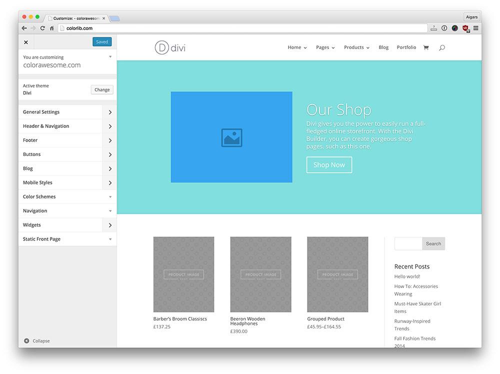 divi-wordpress-theme-customizer