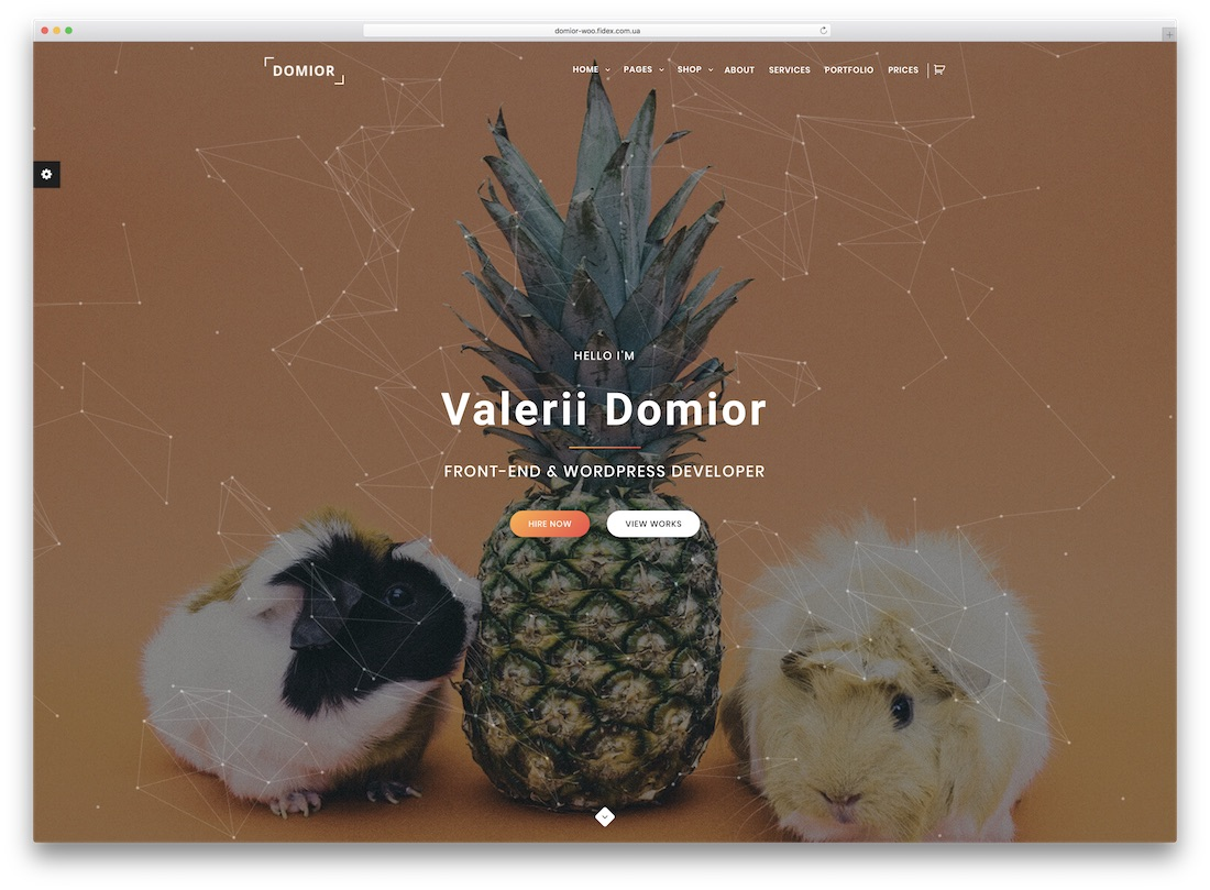 domior ecwid compatible theme