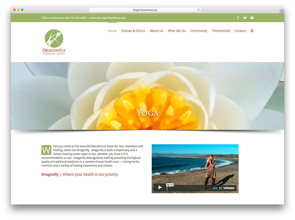 dragonflywellness-spa-avada-website-example