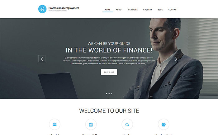nt Drupal Template