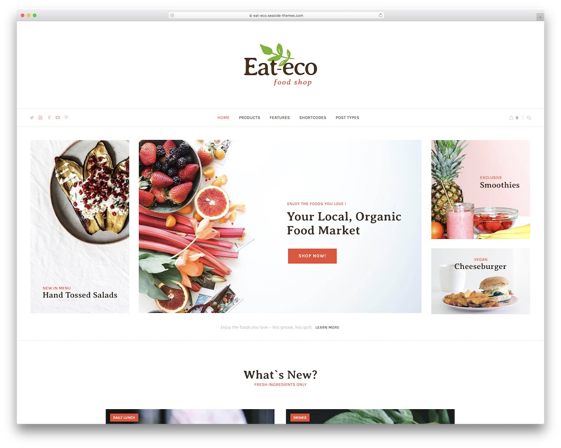 eat eco green eco friendly wordpress theme