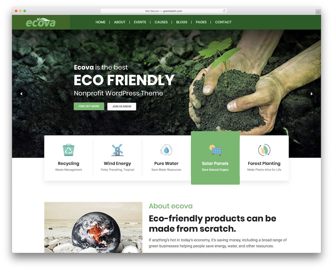 ecova wordpress theme
