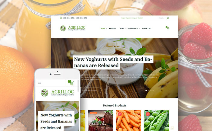 Food Store WooCommerce Theme