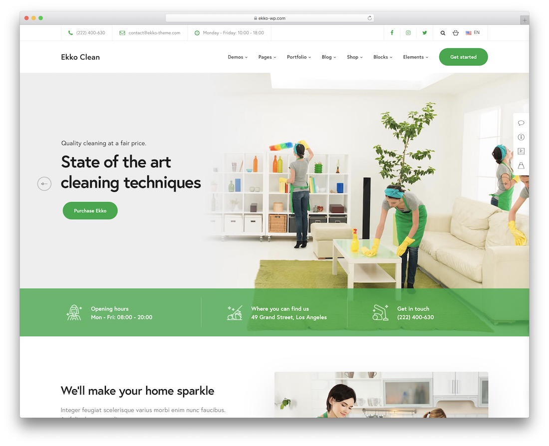 ekko cleaning company theme