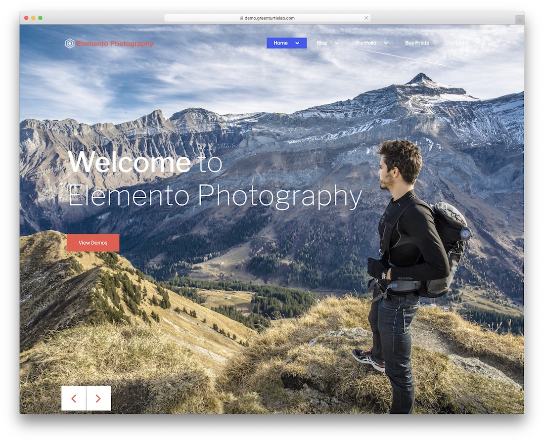 elemento photography free gallery wordpress theme
