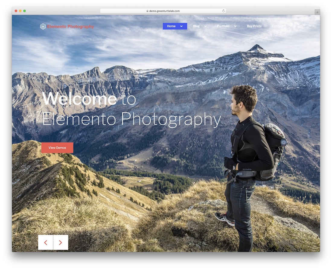 elemento photography free parallax scrolling wordpress theme