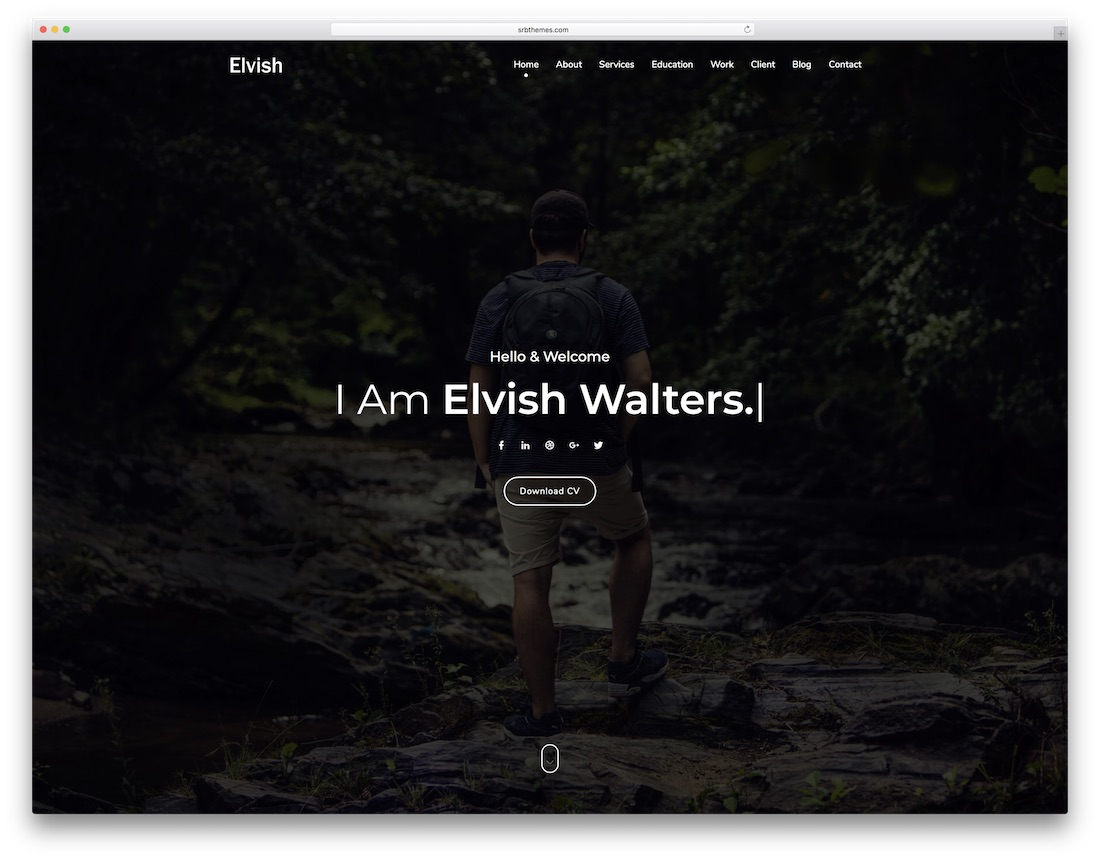 31 Most Jaw-Dropping Freelancer Website Templates 2019
