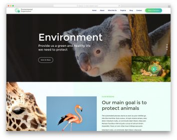 EnvironmentaOrganization Free Template