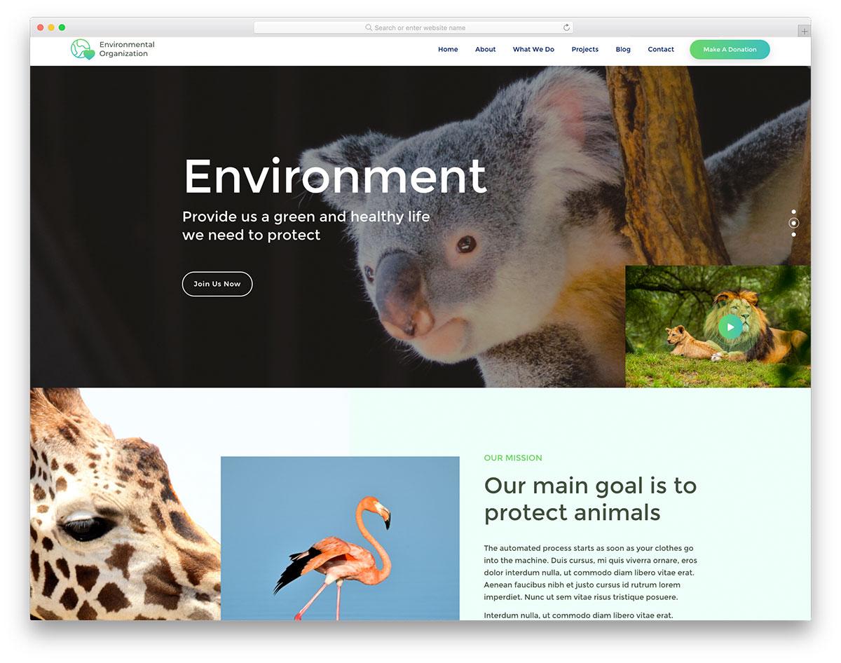 EnvironmentaOrganization Free Template