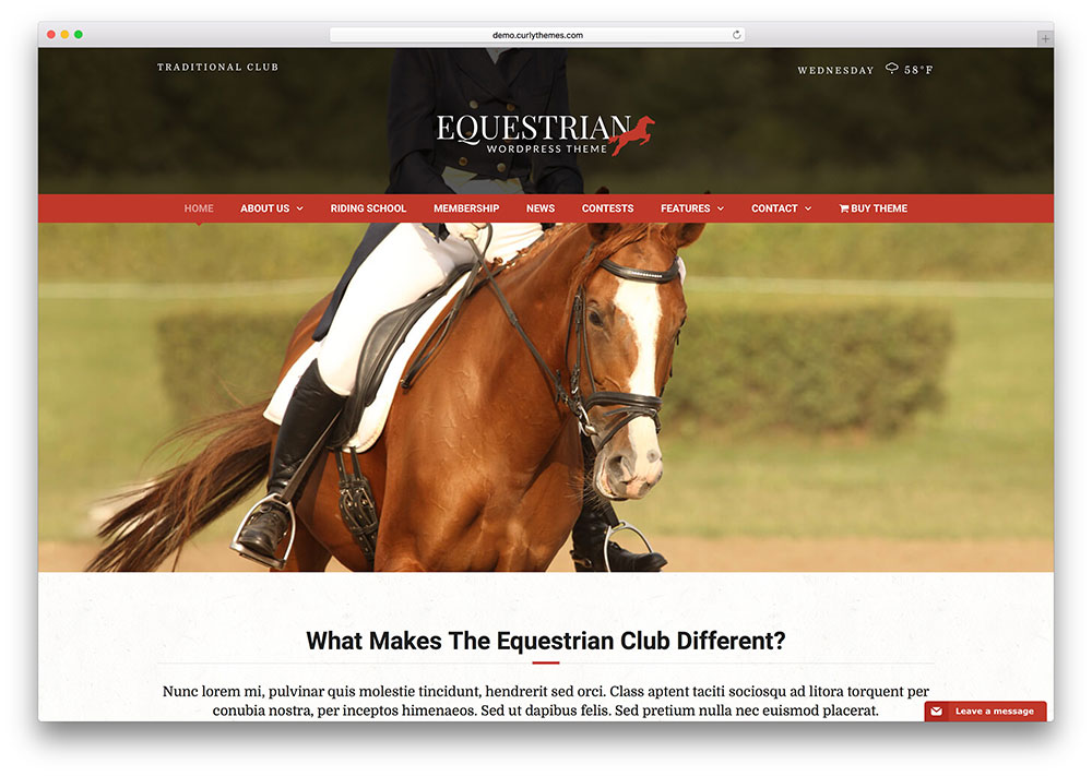 equestrian-creative-lifestyle-theme