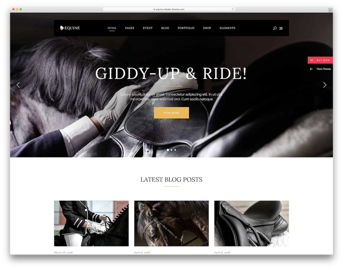 equine animal wordpress theme